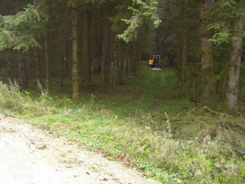 rueckeweg-1