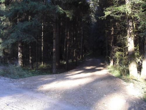 rueckeweg-11